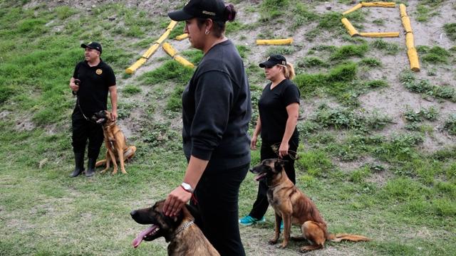 27 Canes componen la Unidad K9 del Sistema Penitenciario