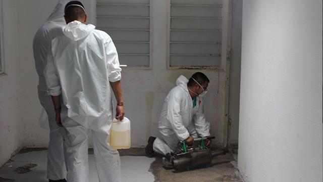 sanitizacion 1.png